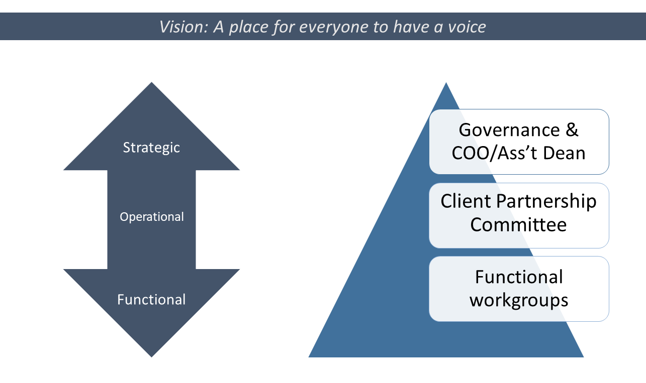 Slide depicting the governance model: strategic, operational and functional.