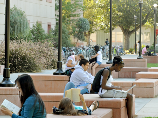 students studying on campus in the outdoors