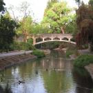 bridge over the UC Davis Arboretum waterway, with ducks swimming in foreground.